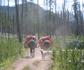 trail2-Buddy.jpg